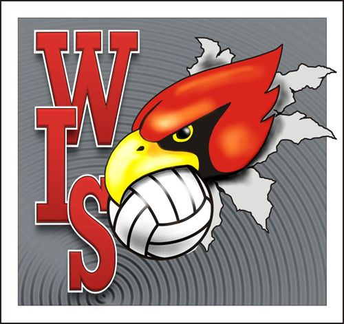 WIS Cardinal with a volleyball in the cardinal's mouth